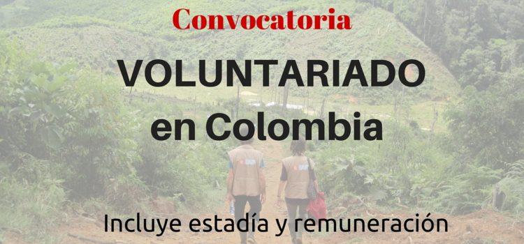 Quieres tener experiencia en derechos humanos en Colombia? Voluntariado internacional en Colombia remunerado