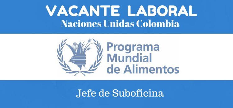 Trabaja con el Programa Mundial de Alimentos en Colombia