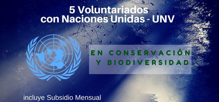 5 Voluntariados con Naciones Unidas en temas de conservación de la biodiversidad