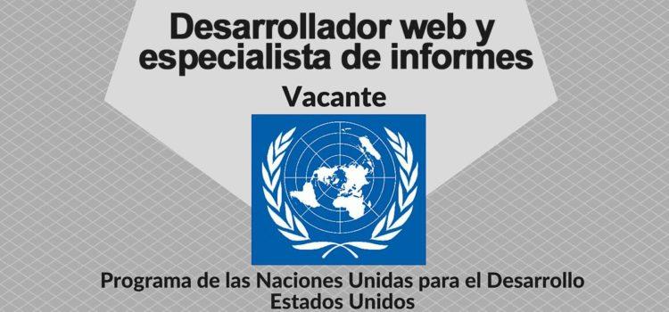 Convocatoria para Desarrollador web de soluciones y especialista en informes