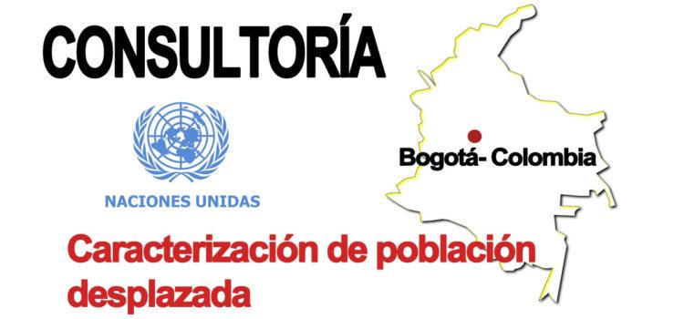 Consultor asesor para caracterización de población desplazada en Colombia