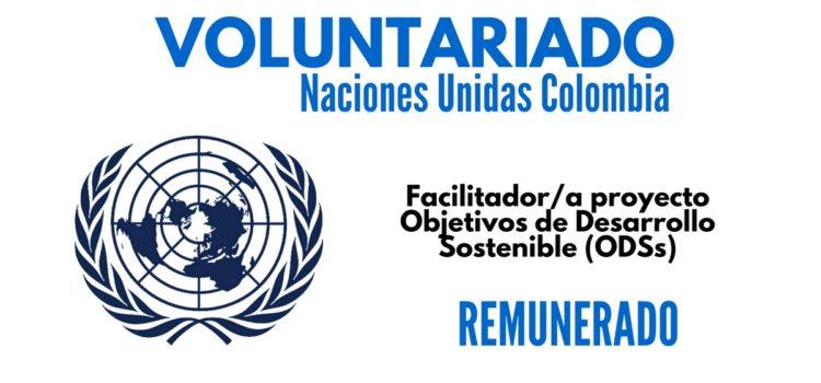 Voluntariado remunerado con Naciones Unidas en Colombia