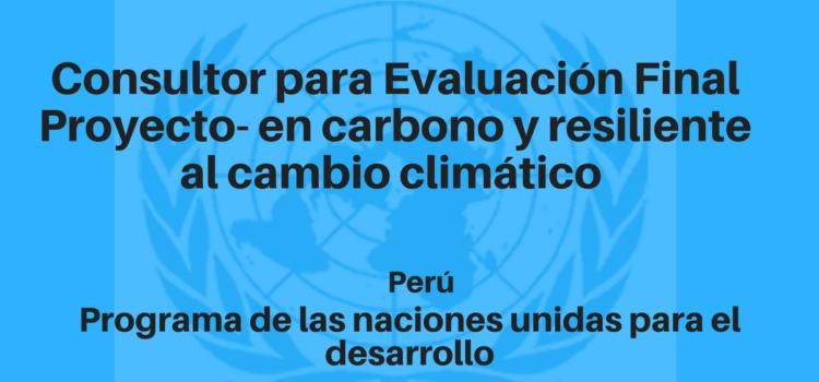 Consultor para Evaluación Final Proyecto-Hacia un desarrollo bajo en carbono y resiliente al cambio climático
