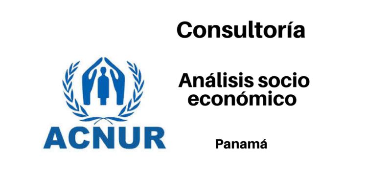 Consultoría Análisis Socio Económico con ACNUR