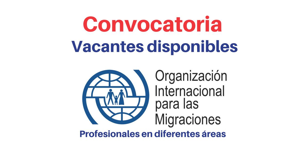 OIM abre convocatorias para profesionales en diferentes áreas