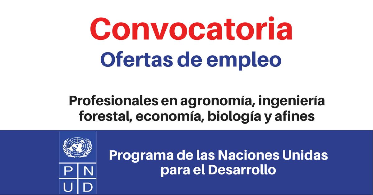 PNUD busca profesionales en Agronomía, Ingeniería Forestal, Economía, Biología y afines