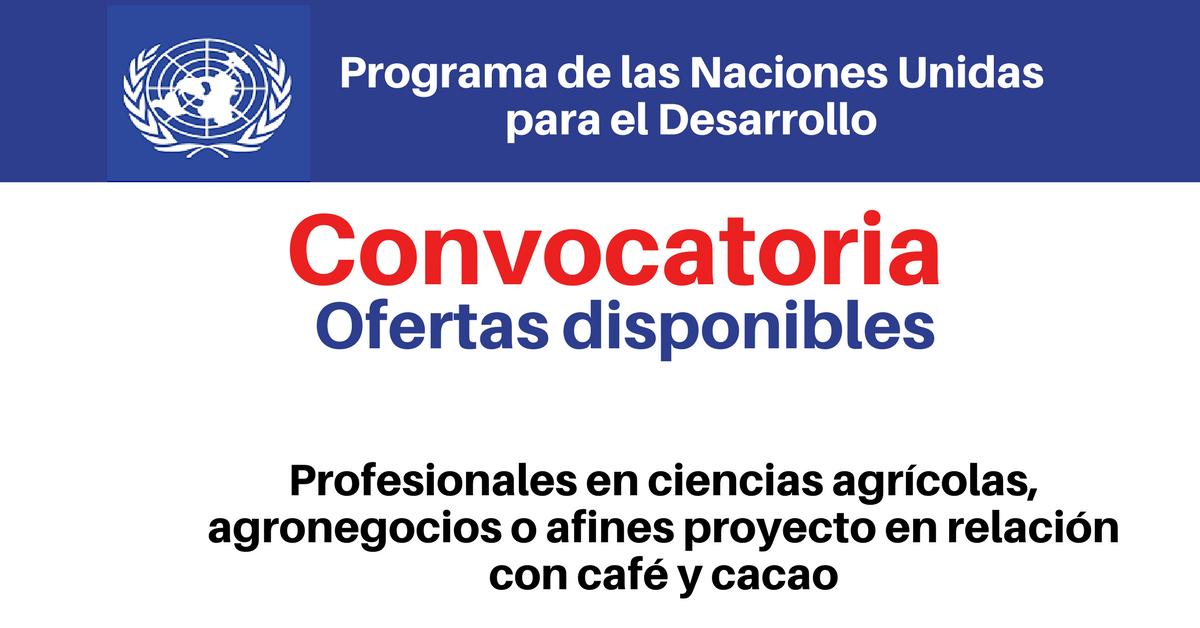 PNUD convoca profesionales en ciencias agrícolas, agronegocios o afines proyecto en relación con café y cacao