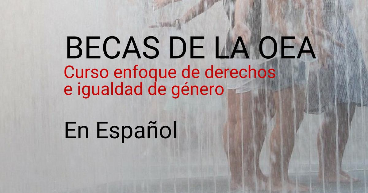 La OEA ofrece curso sobre Derechos e Igualdad de Género