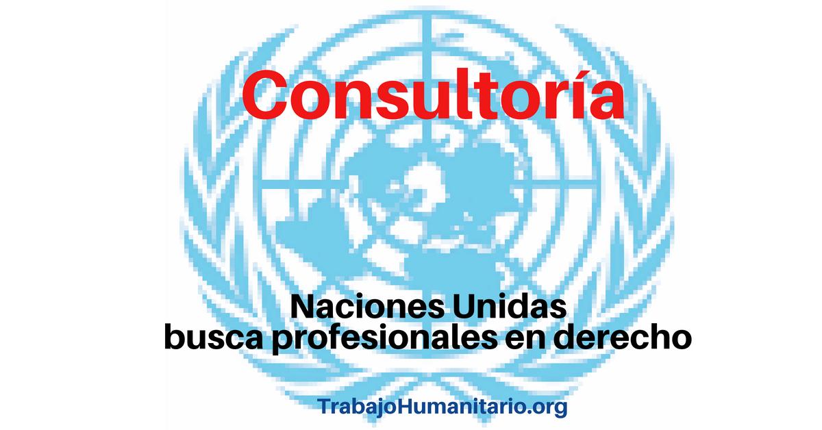 Consultoría con Naciones Unidas