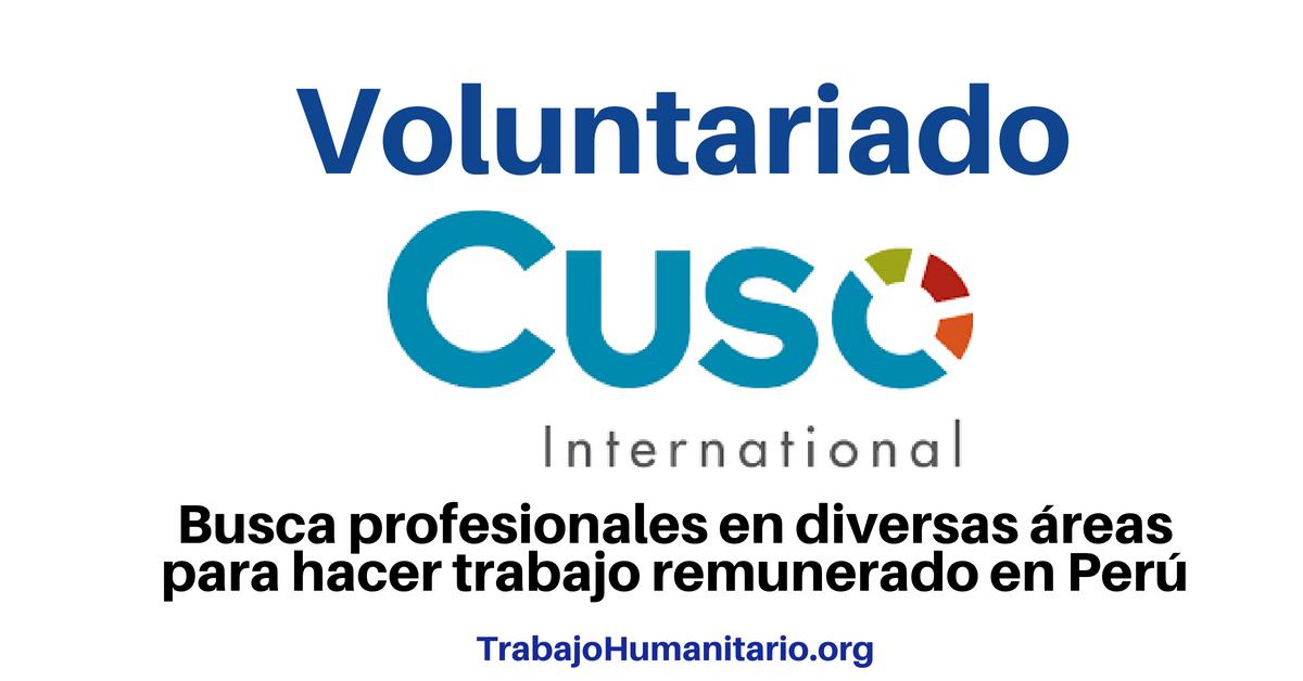 Voluntariado remunerado en Perú