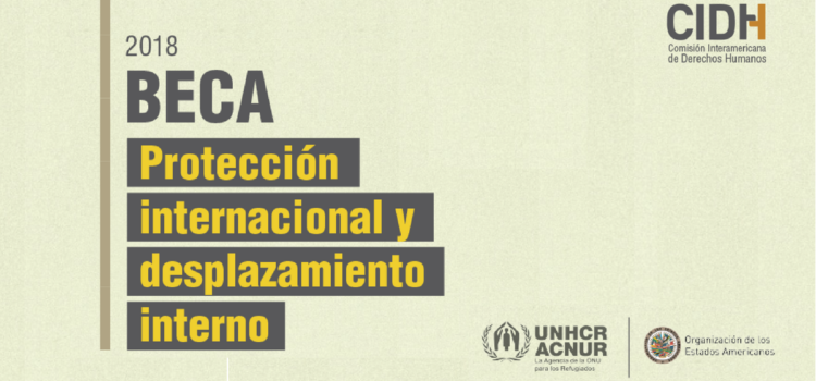 Becas en Protección internacional y desplazamiento interno