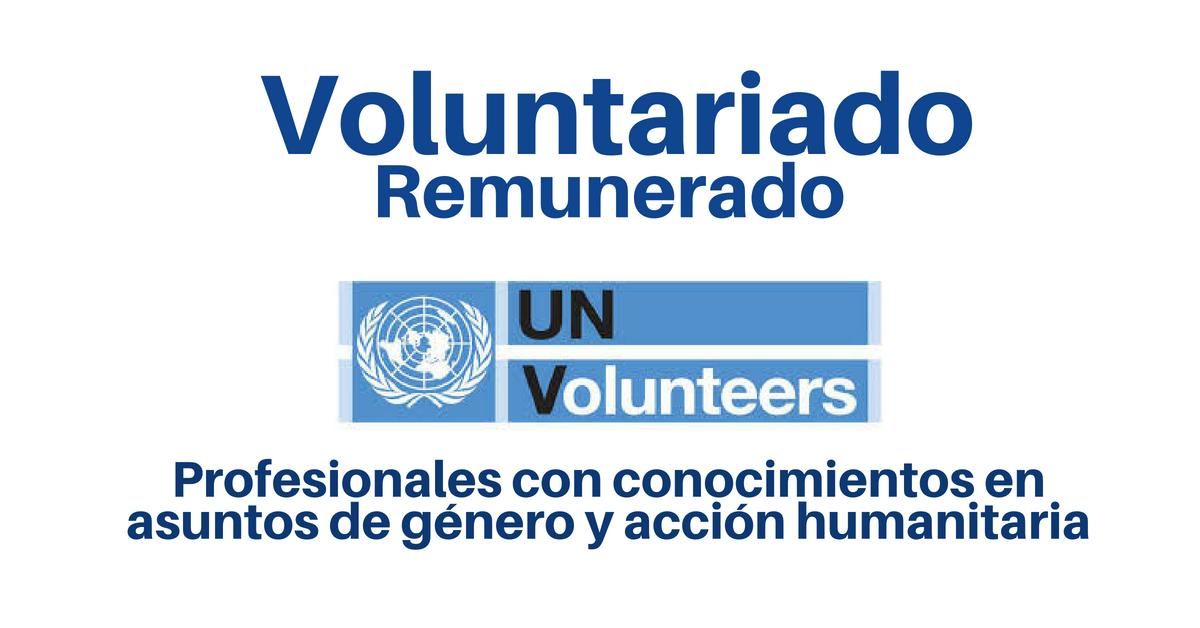 Voluntariado ONU en asuntos de género y acción humanitaria