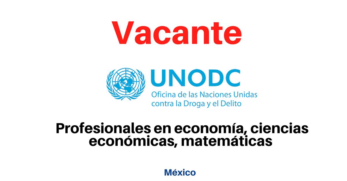 Oportunidades laborales con la UNODC