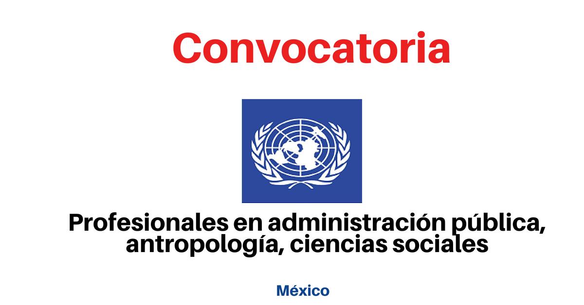 Trabaja con las Naciones Unidas