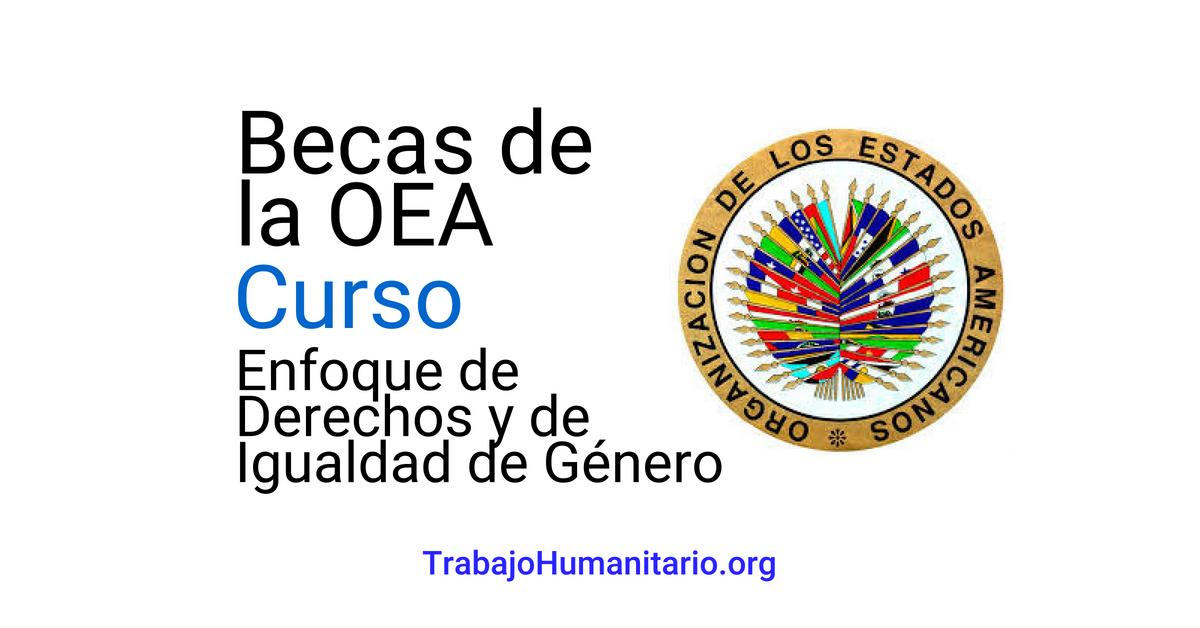 Becas de la OEA sobre Enfoque de Derechos y de Igualdad de Género