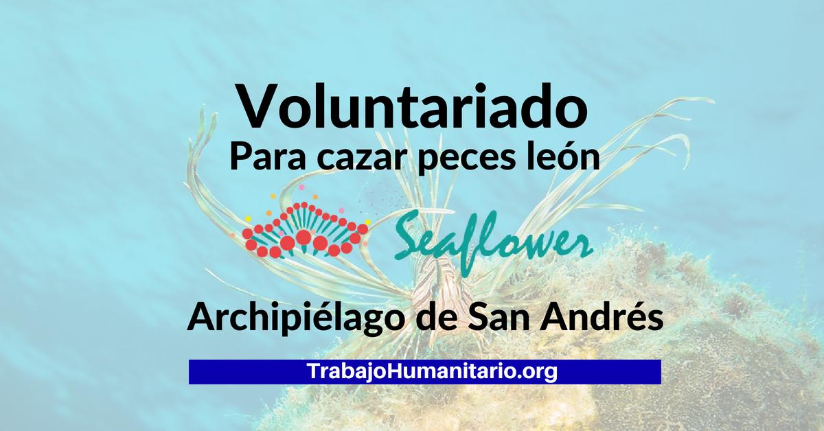 Voluntariado en San Andrés Islas (Colombia)
