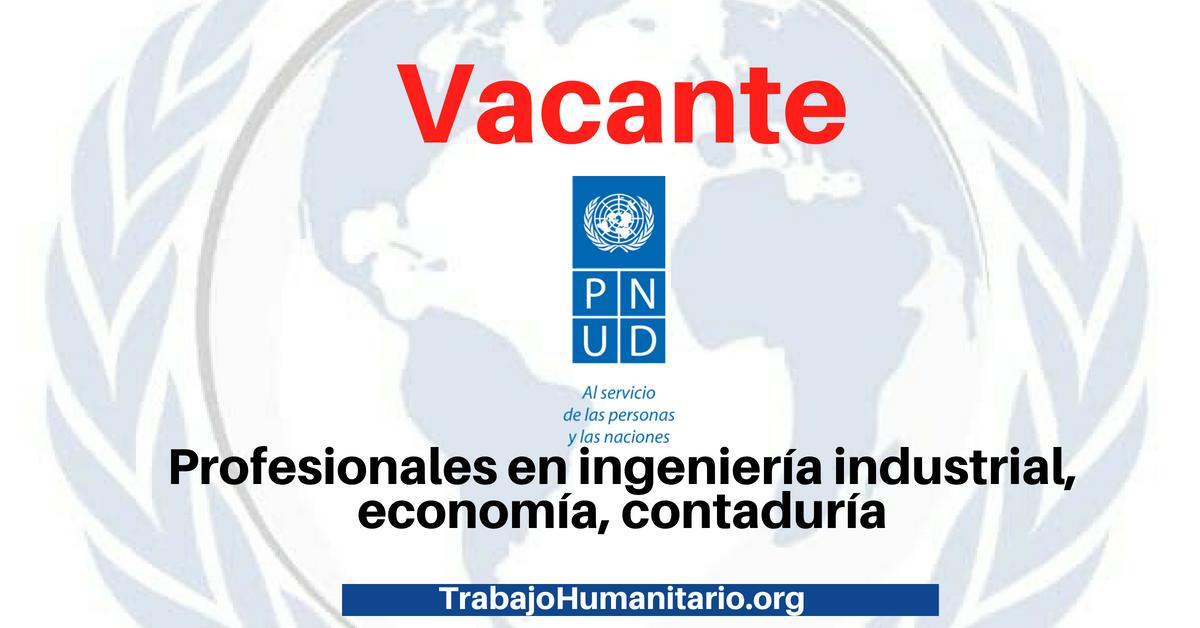 Trabajo con las Naciones Unidas