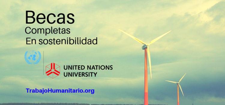 Universidad de Naciones Unidas ofrece Becas completas en sostenibilidad