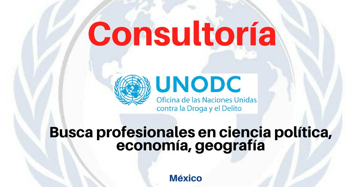 Consultoría con UNODC