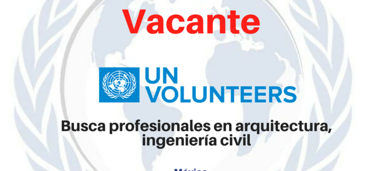 Oportunidades con UN Volunteers