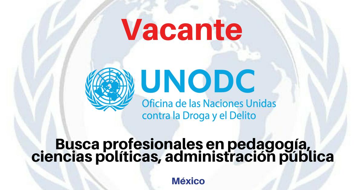 Trabaja con la UNODC