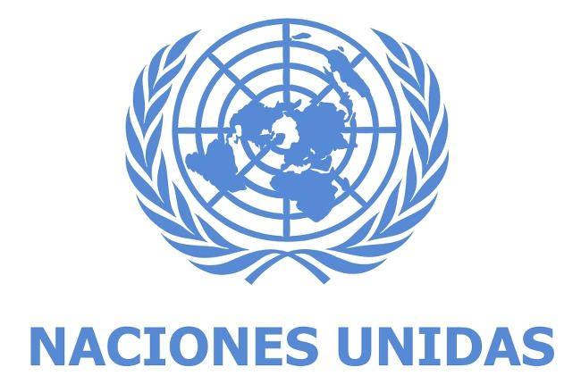 Resultado de imagen para Voluntario Naciones