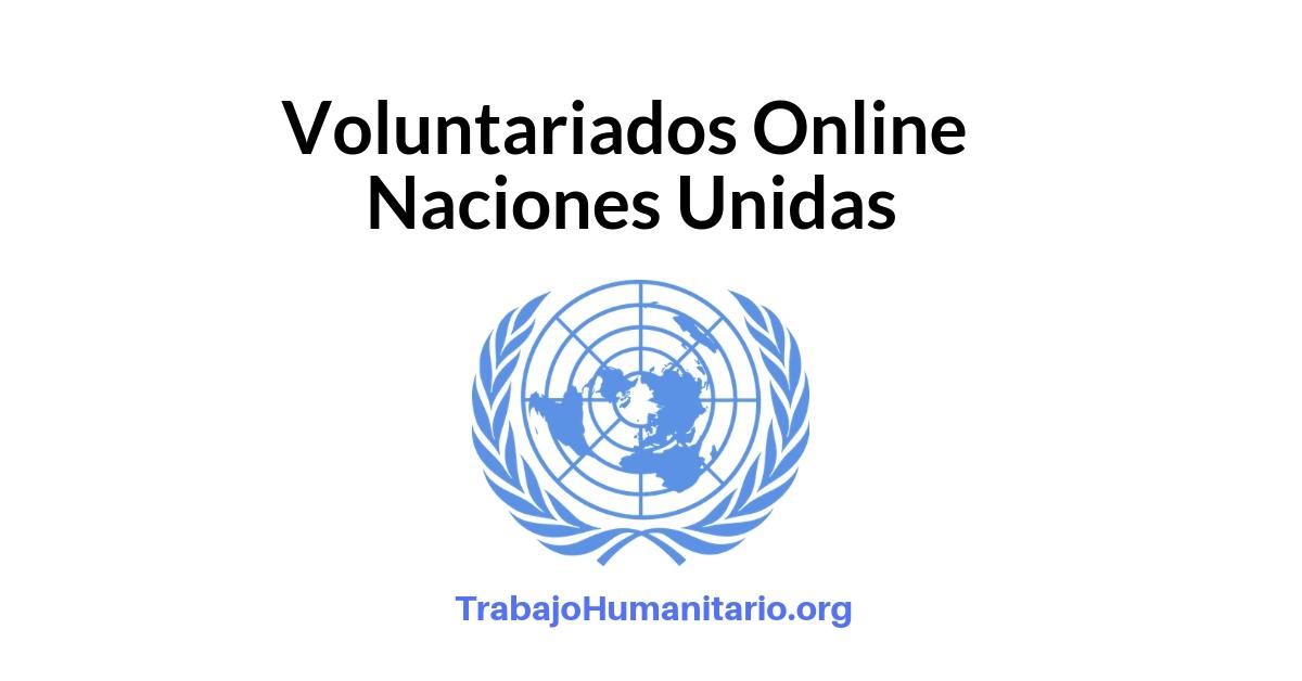 Voluntariados Online con Naciones Unidas – ONU