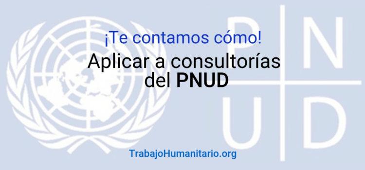 Te contamos cómo acceder a las consultorías del PNUD