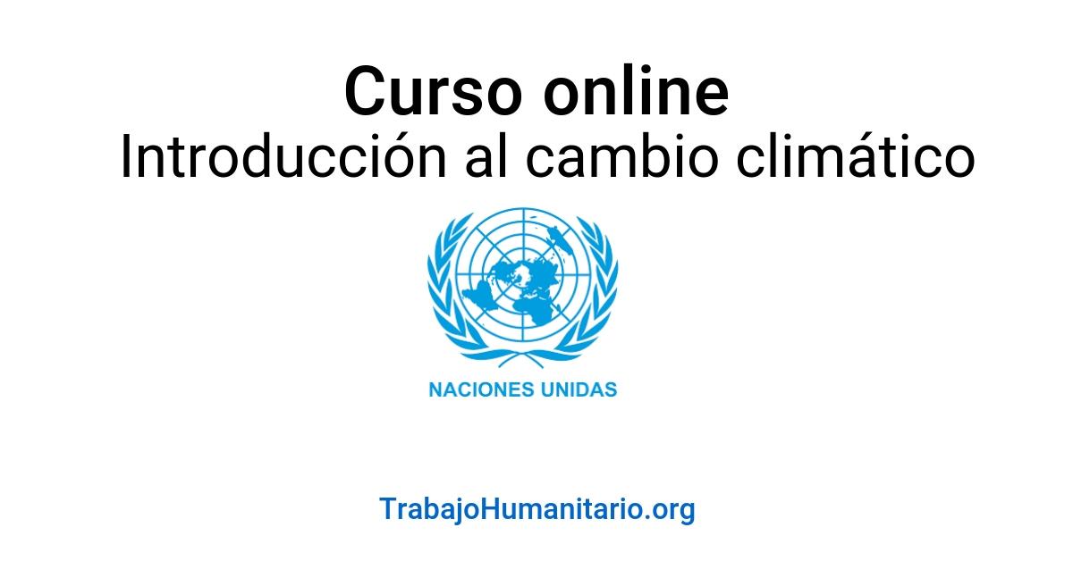 Curso online con la ONU