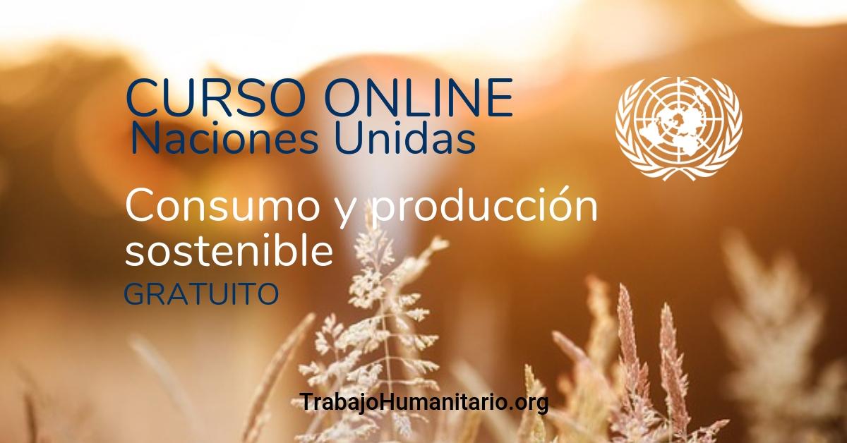 Curso online gratuito ONU : consumo y producción sostenibles
