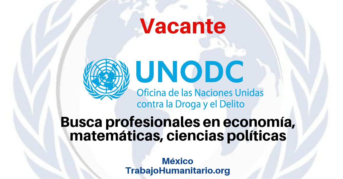 Vacantes con la UNODC