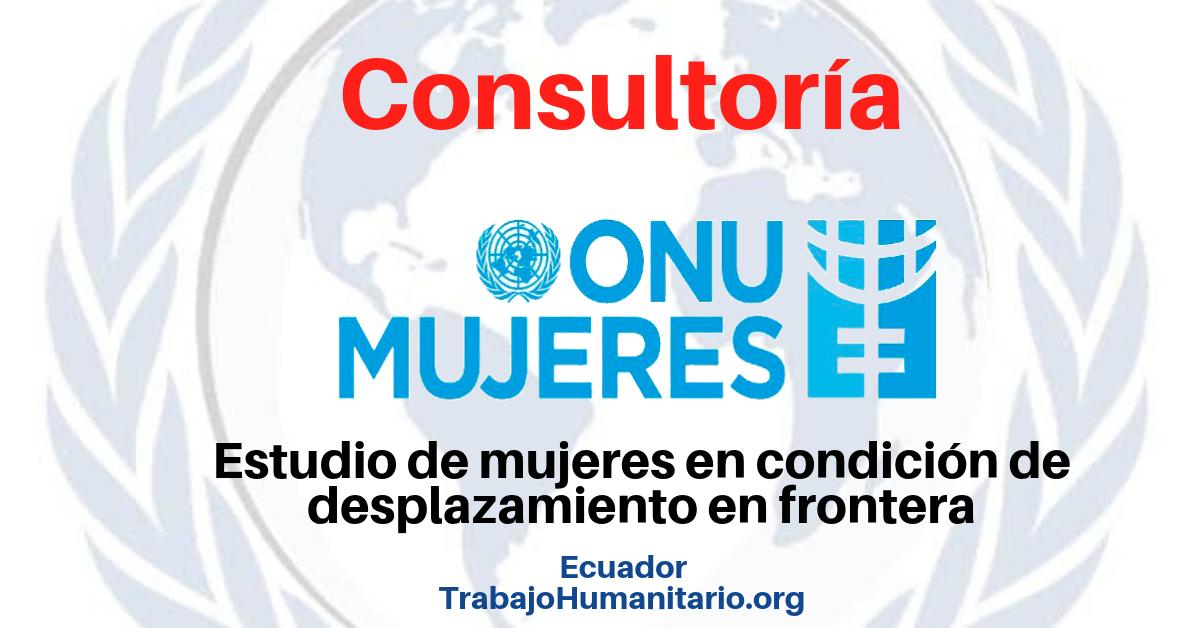 Consultoría en ONU Mujeres