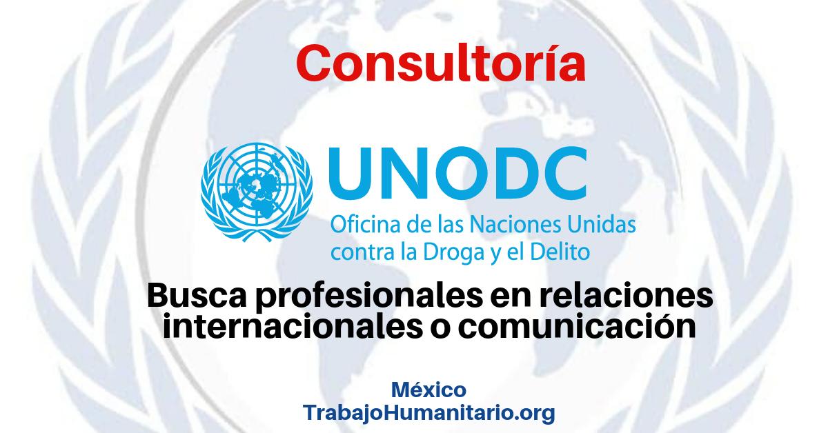 Consultoría con la UNODC