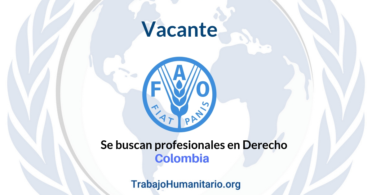 Vacante con la FAO