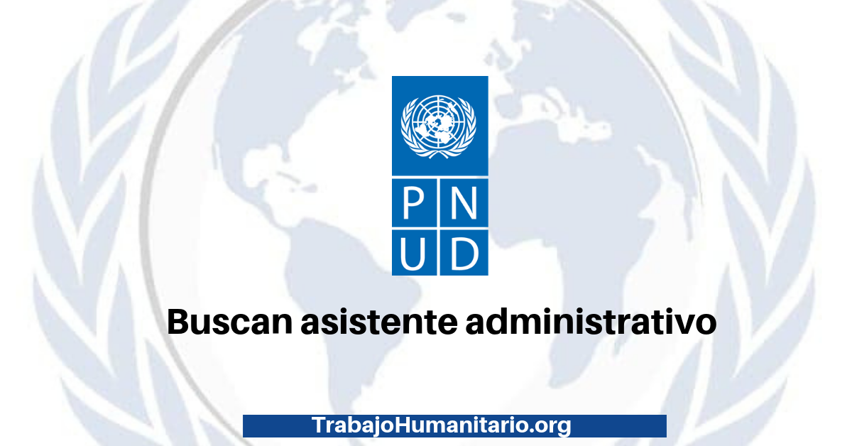 Vacante disponible con PNUD