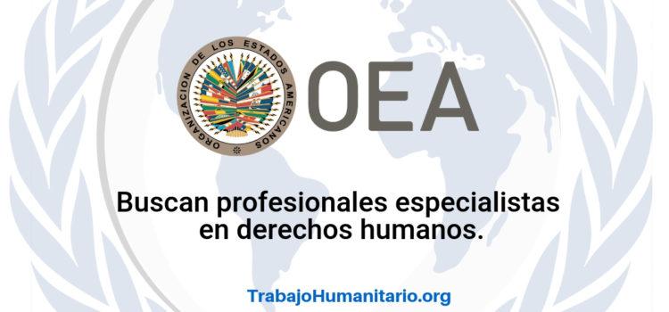 La OEA busca profesionales para sus vacantes