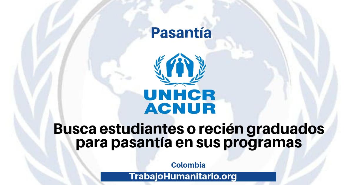 Programa de pasantías con ACNUR