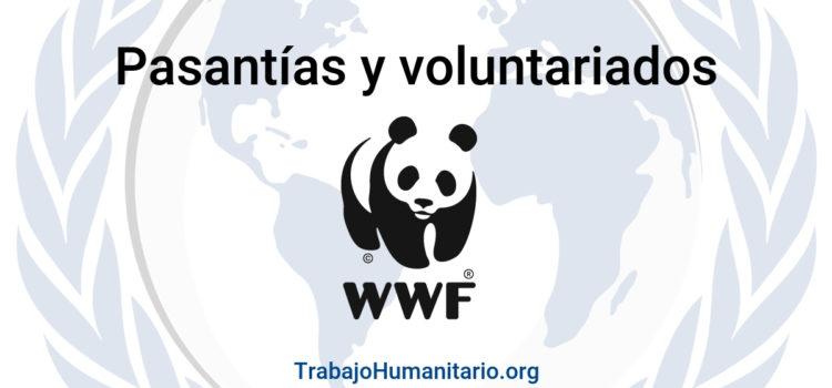 Pasantías y Voluntariados con WWF