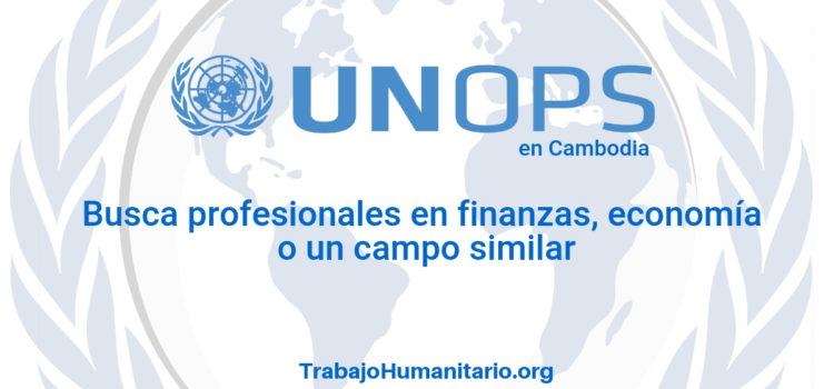 Naciones Unidas – UNOPS busca profesionales en economía o ciencias afines