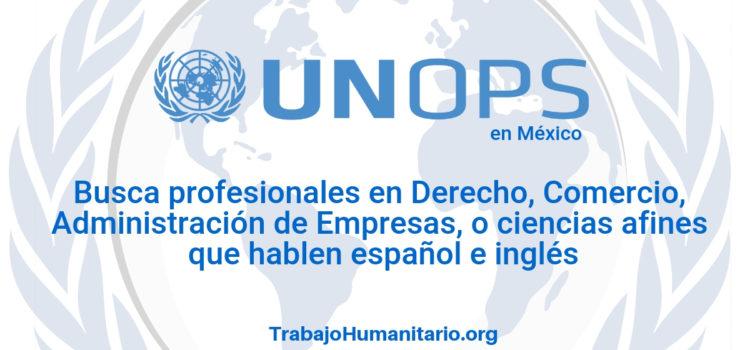 Naciones Unidas – UNOPS busca profesionales en admin de empresas o afines