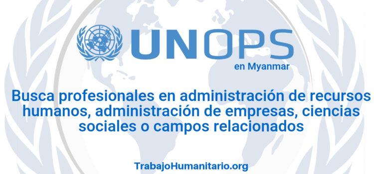 Naciones Unidas – UNOPS busca profesionales para área de Recursos Humanos