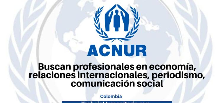 ACNUR busca profesionales para sus vacantes
