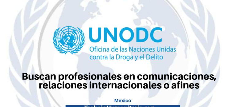 Vacantes con UNODC