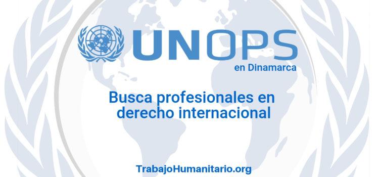 Naciones Unidas – UNOPS busca asesores legales