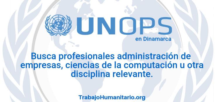 Naciones Unidas – UNOPS busca profesionales en administración o ciencias de la computación
