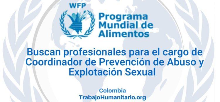 PMA busca Coordinador de Prevención de Abuso y Explotación Sexual