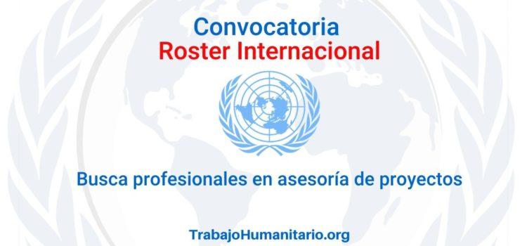 Llamamiento para Roster Internacional. Profesionales para asesores de proyecto