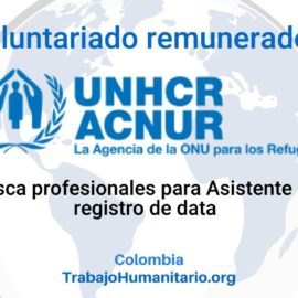 Voluntariado con ACNUR: Auxiliar de Registro de Data