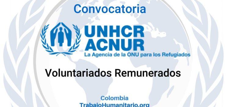Convocatoria de Voluntariados con Naciones Unidas