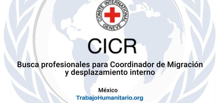 CICR en México busca Coordinador de Migración y Desplazamiento Interno